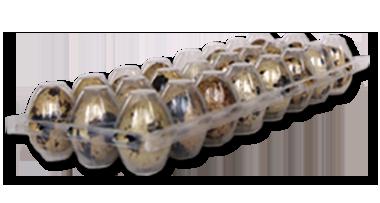 Estuches para huevos de codorniz